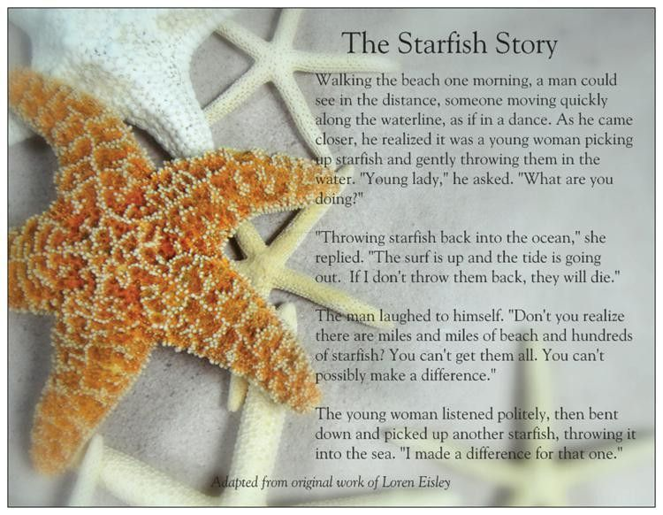 The Starfish Story postcard | Starfish, Motivational and ...