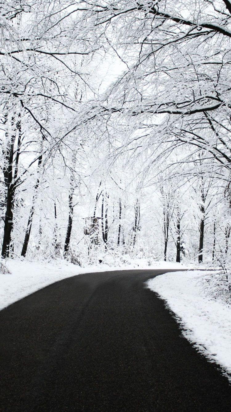 25 Winter iPhone Wallpapers (с изображениями) Зимние