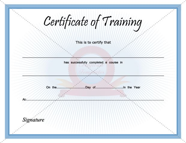 Sample Training Certificate Certificate Of Training Template Sample Pdf  Certificate Of Training Template