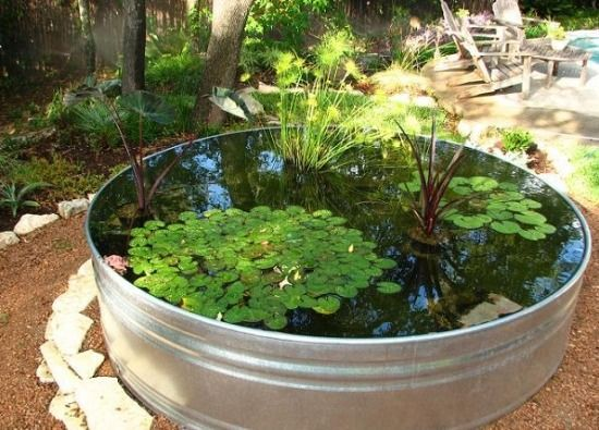teich eimer metallbeh lter wassergarten selbermachen gardening pinterest wassergarten. Black Bedroom Furniture Sets. Home Design Ideas
