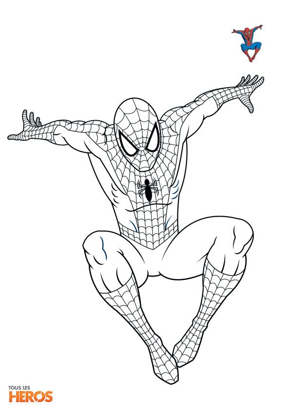 Coloriez spiderman le superh ros pr f r des adolescents coloriage sur - Coloriage spiderman imprimer ...