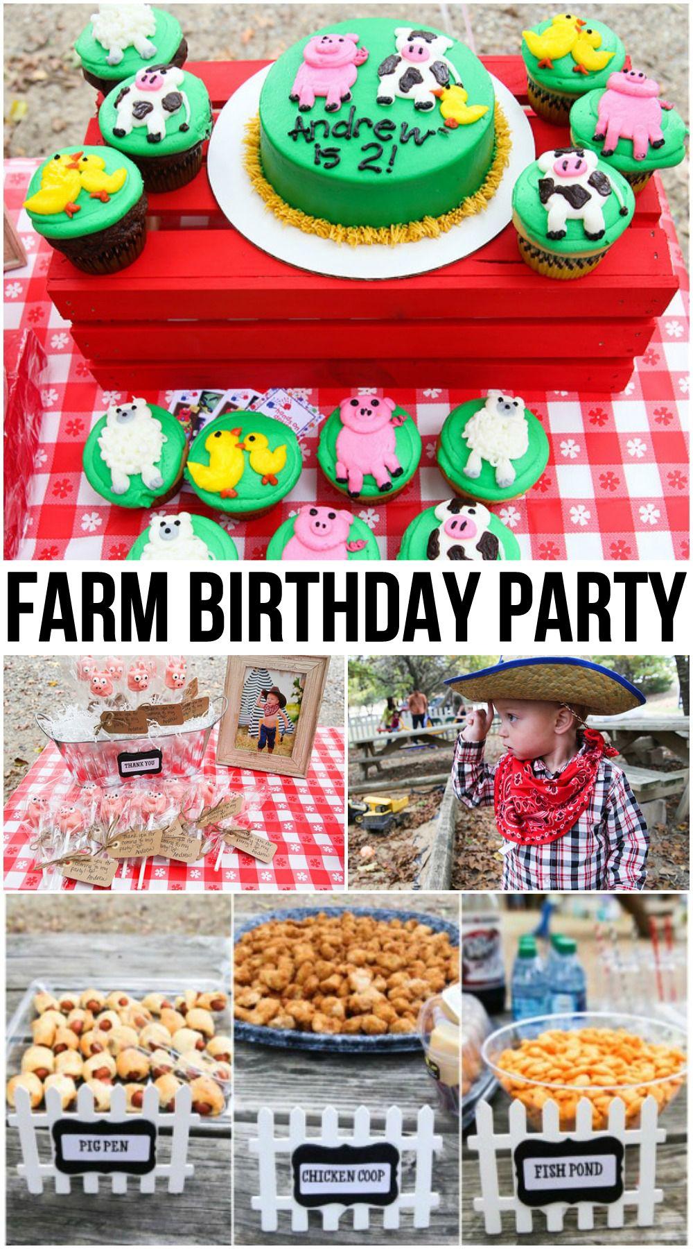 Farm Birthday Party Theme for Toddler Boys