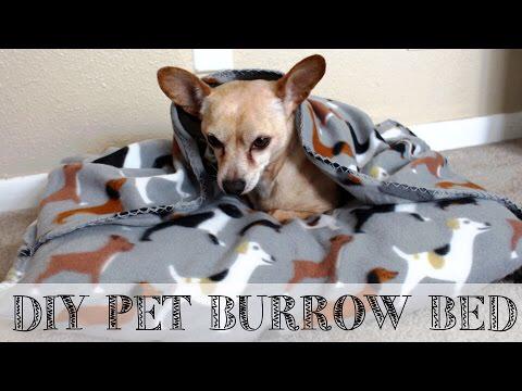 DIY 10 minute Pet Burrow Bed Pet snuggle beds, Dog pet
