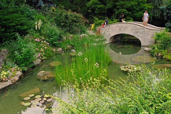 Image Result For Japanese Garden Stone Bridge