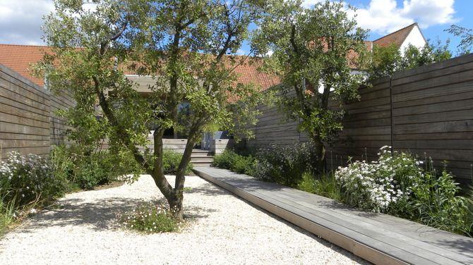 stadstuin, houten terras, houten wand, meerstammige boom, catwalk