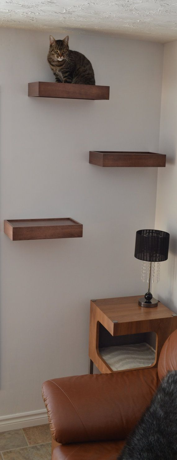 Cat wall shelf, cat wall perch -package of three by HUVE collection
