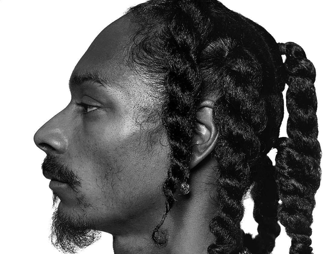 Jil Kos Snoop Dogg Snoop Mens Braids Hairstyles