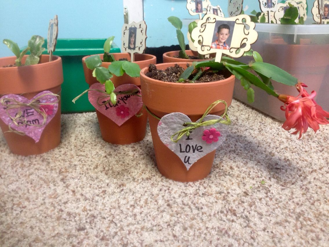 What to do with all that recycled / homemade paper that the kids made in Kindergarten? And a bunch of donated plant clippings? Make Mother's Day plant pots with cut out paper hearts