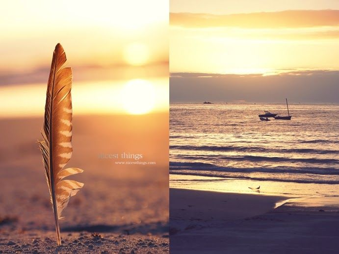 * Nicest Things: Summer By The Sea feather sunset beach hdr photography golden hour