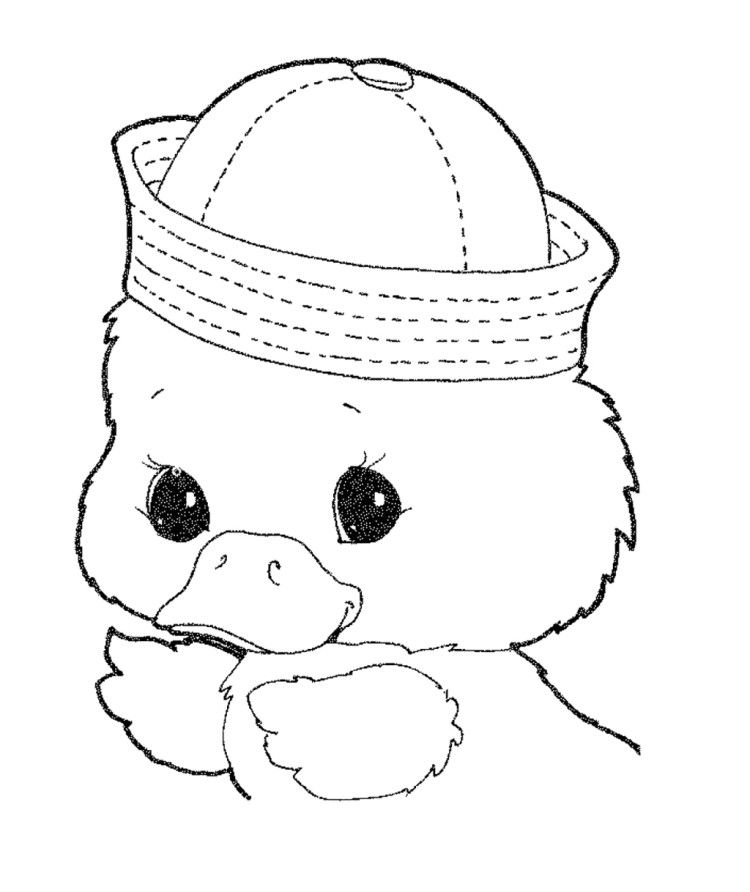 Cute Baby Duck Wear A Hat Coloring Pages