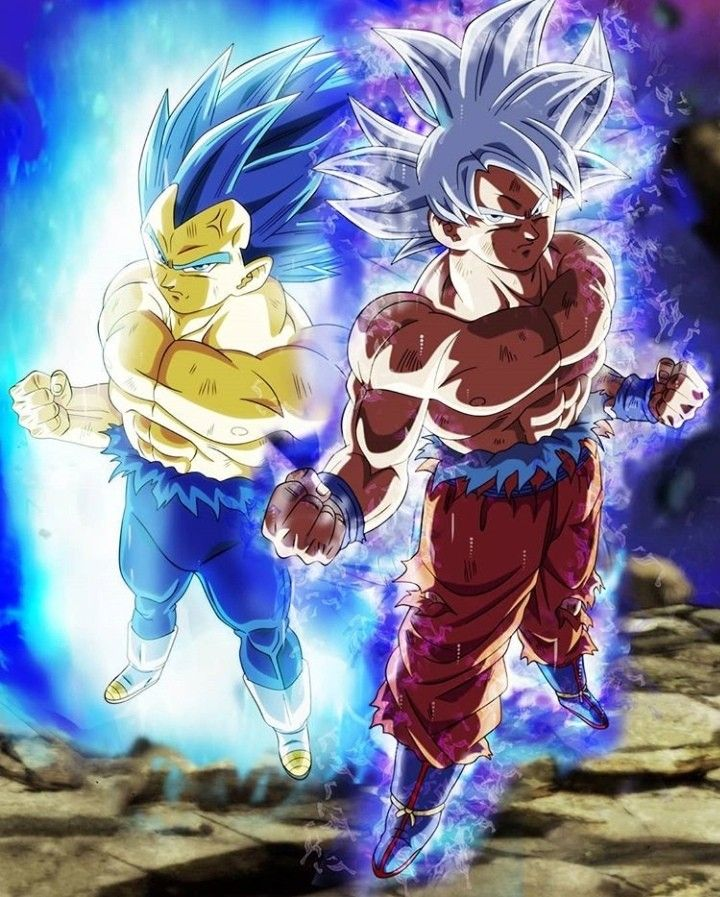Goku ultra Instinct and Vegeta SSJBE Goku ultra instinct