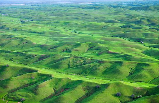 Rolling green hills in spring, northern Calif. (© Anthony Dunn/Alamy)