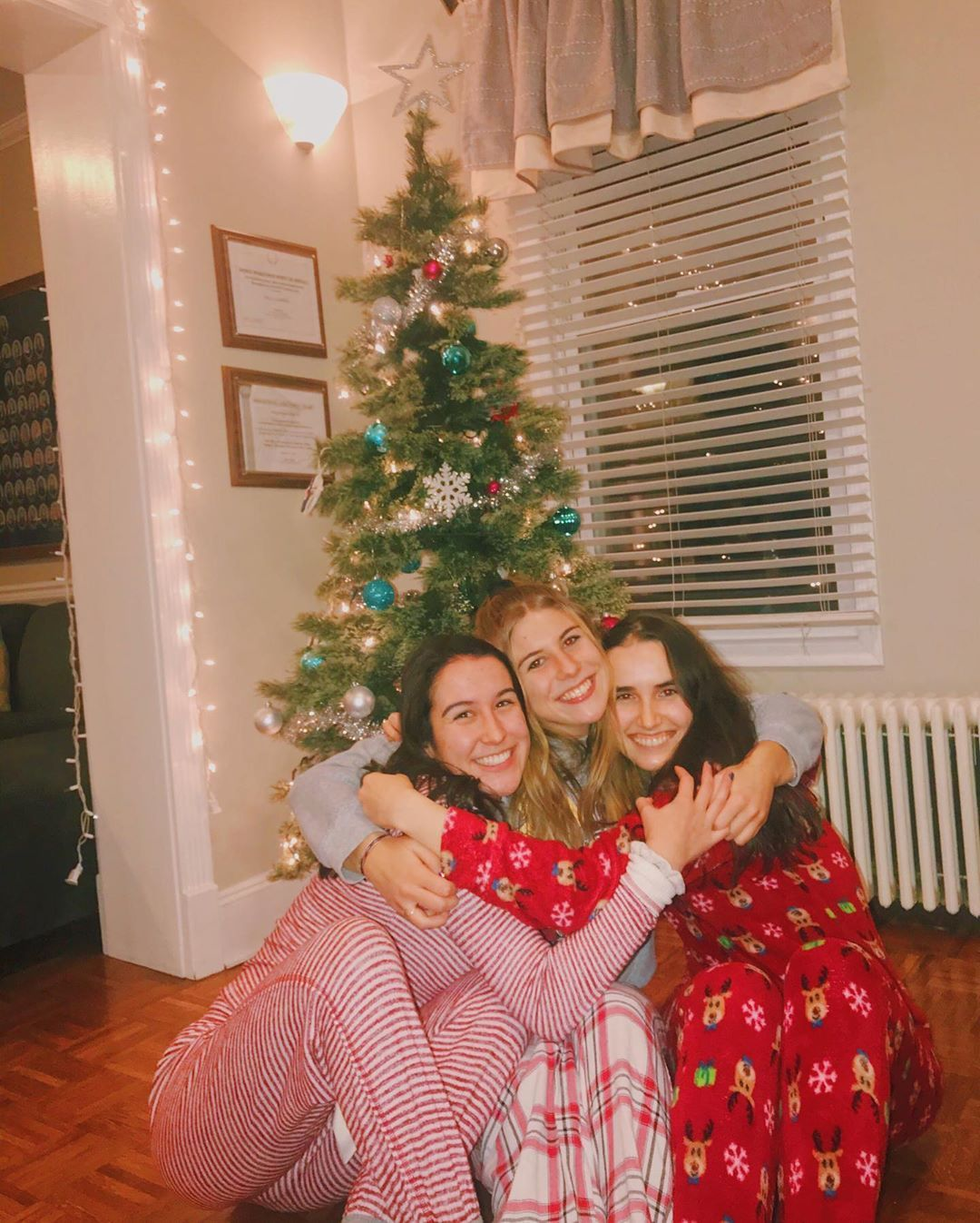 Delta Gamma Rudeltagamma Instagram Photos And Videos Holiday Decor Christmas Tree Holiday
