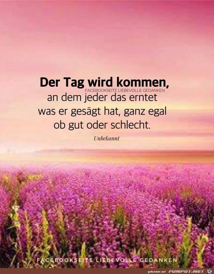 Pin Von Neso Auf Quotes Quotes Words Und Quotes About God