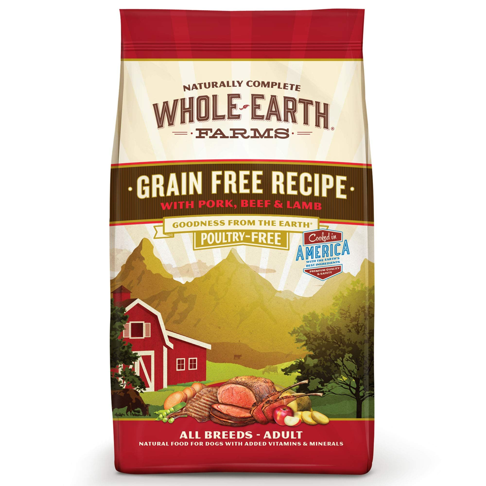 Natures Recipe Healthy Skin Dry Dog Food Vegetarian Recipe 30pound Want Additional Info Click On The Imag Dog Food Recipes Dry Dog Food All Natural Dog Food