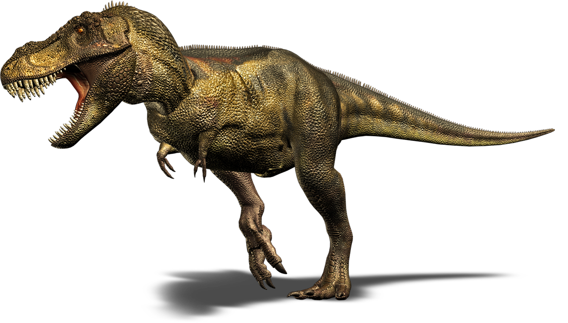 Bbc Error 404 Not Found T Rex Png Images