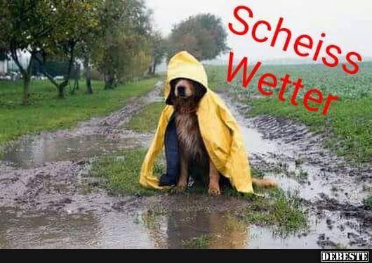 Schei Wetter Scheiß Wetter Regen Bilder Lustig Und
