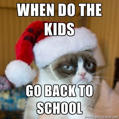 Poor Grumpy Cat Is Ready For The Kids To Go Back To School Will You Be Ready When They Get There Grumpy Cat Humor Grumpy Cat Christmas Grumpy Cat