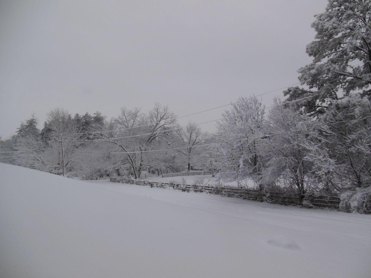It's a white winter wonderland!