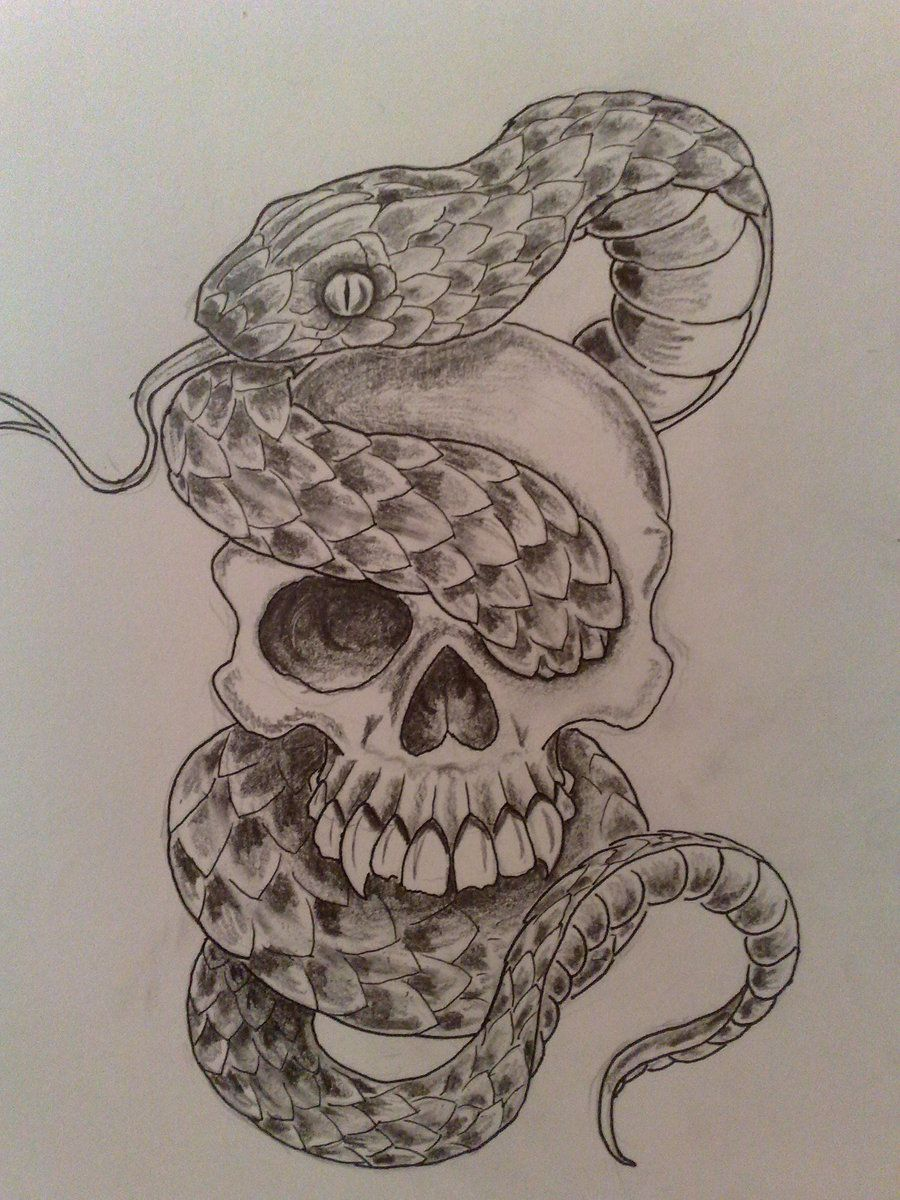 Poison Snake And Skull Tattoos
