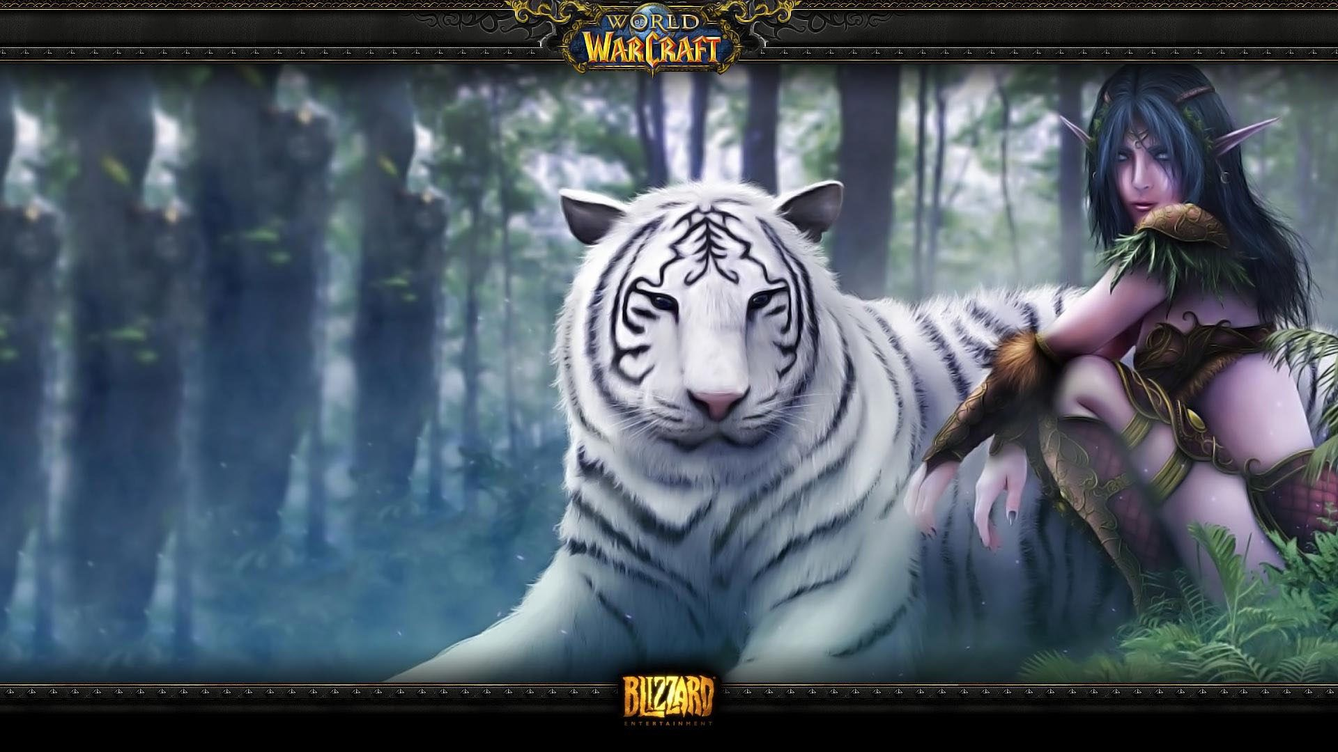 Wow Beautiful Artwork Female Night Elf With Her White Tiger Pet