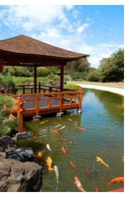 Brilliant Aquaponics Ponds Aquaponics Ko Pond Complete With Rubber Home Interior And Landscaping Palasignezvosmurscom