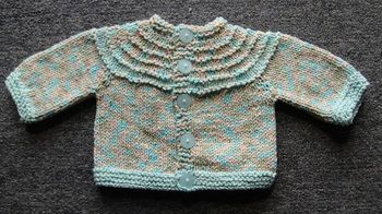 Baby jacket 5 hour baby sweater free knitting pattern crystal baby jacket 5 hour baby sweater free knitting pattern crystal palace yarns crafts pinterest baby sweaters crystal palace and knitting patterns dt1010fo