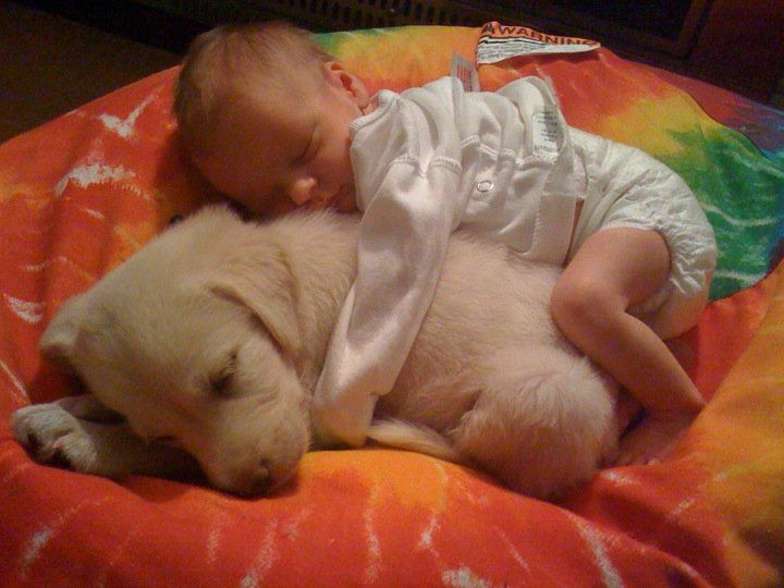 A newborn baby cuddling around a young puppy.