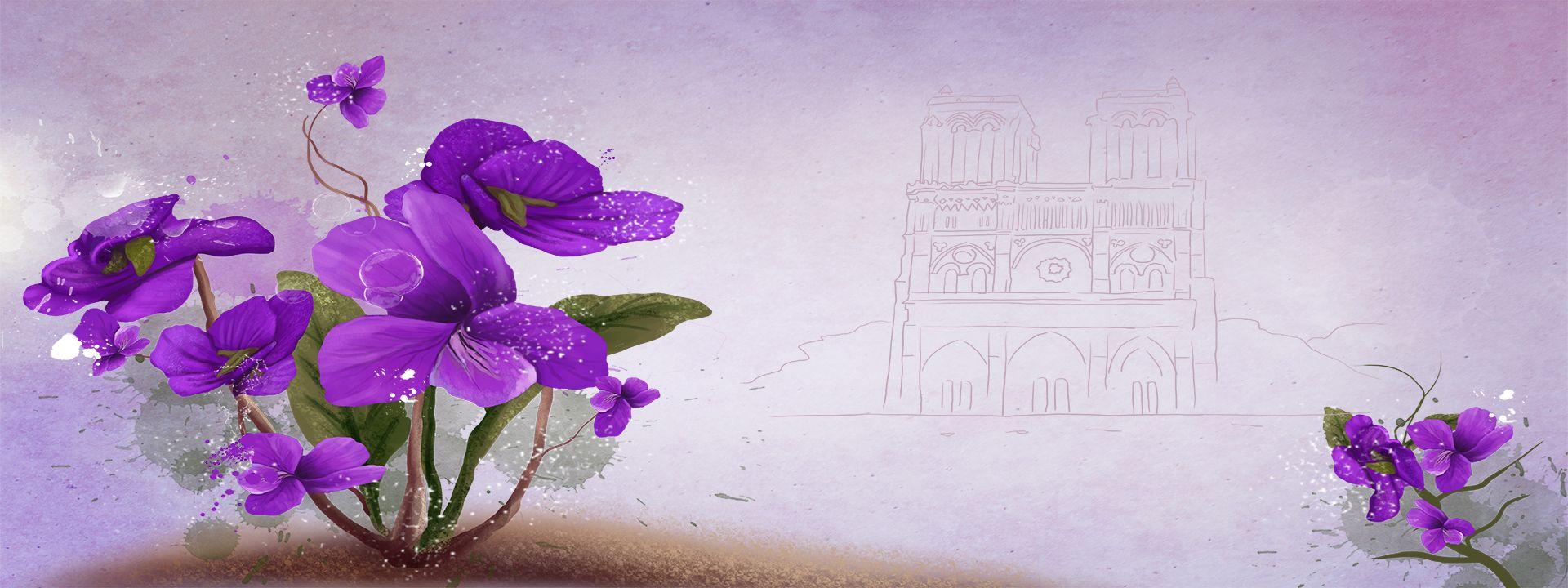 الأرجواني الزهور الخلفية Sketch Background Pink Flowers Floral