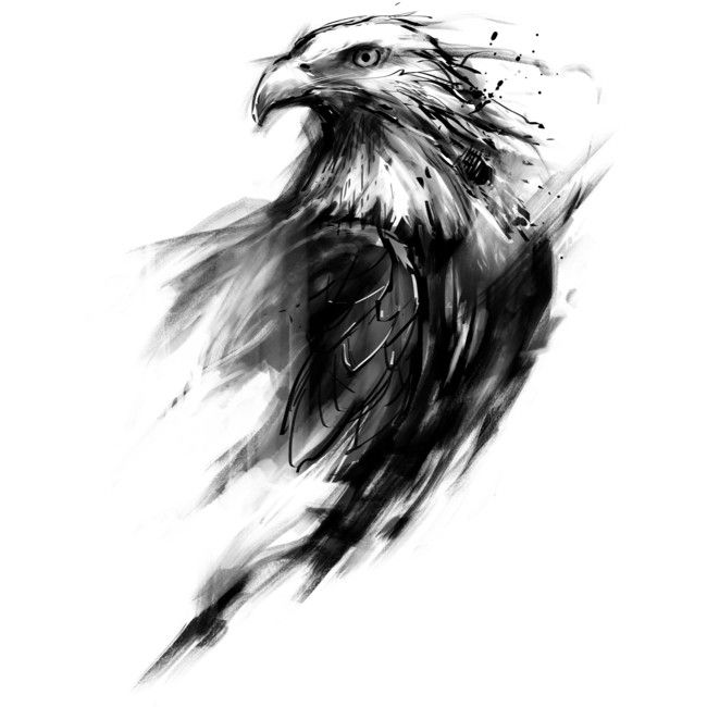 Eagle eye is a t shirt designed by kdeuce to illustrate for Black eagle tattoo shop