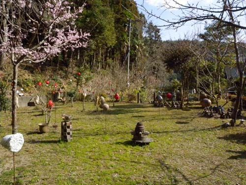 お知らせしているように、ゴールデンウィークの4月29日~5月5日までの陶器市期間、京千でも春のイベントを催します。 陶器市がある期間はとても気持ちのいい季節で、京千の庭の花も見ごろになります。京千の庭