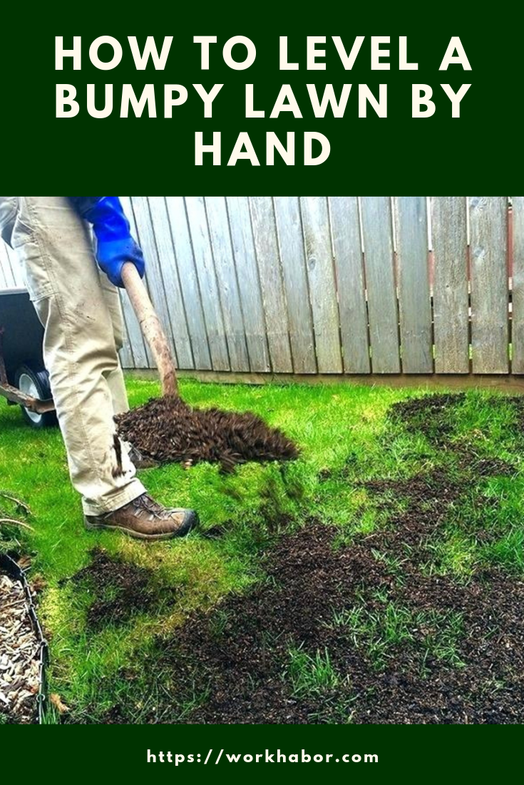 Expert Tips On How To Level A Lawn By Hand In 2020 Lawn Repair Lawn Leveling Diy Lawn