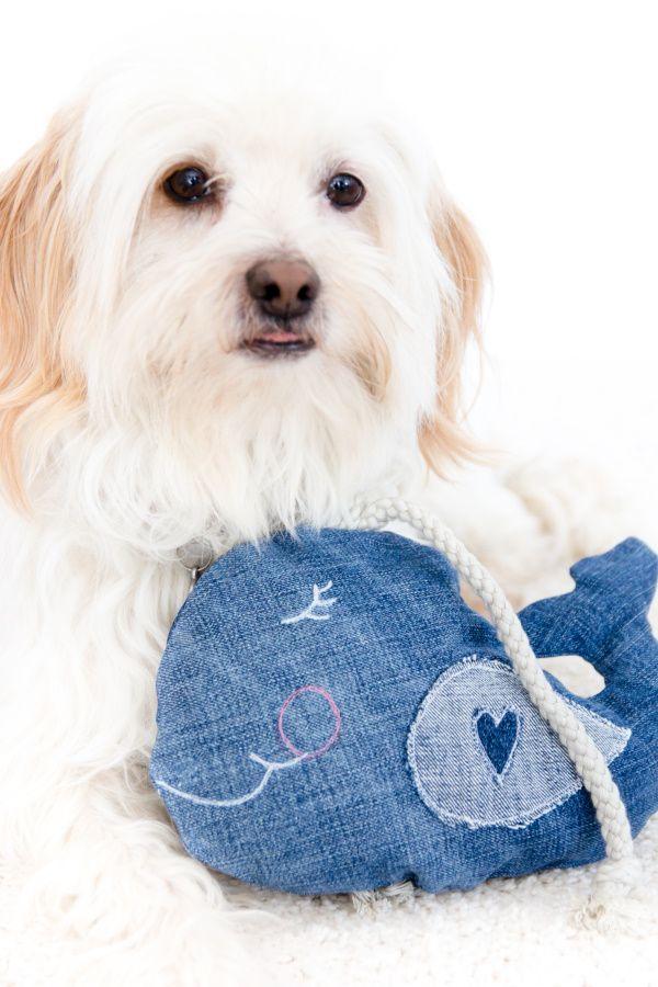 Hund An Der Leine Spielzeug