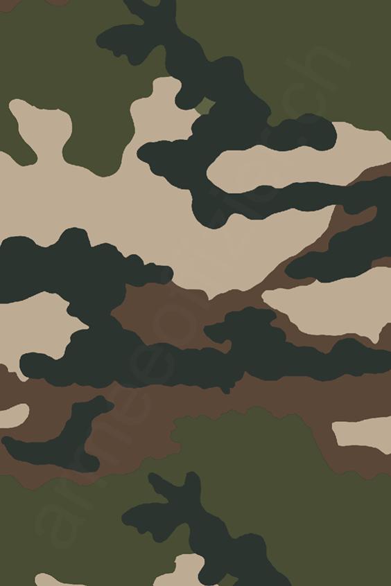 Motif de Camouflage Centre Europe