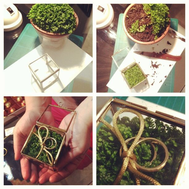 This is my own DIY based on another pinterest DIY for the ring box. - A small glass box, moss and the rings. #renata&arthurwedding