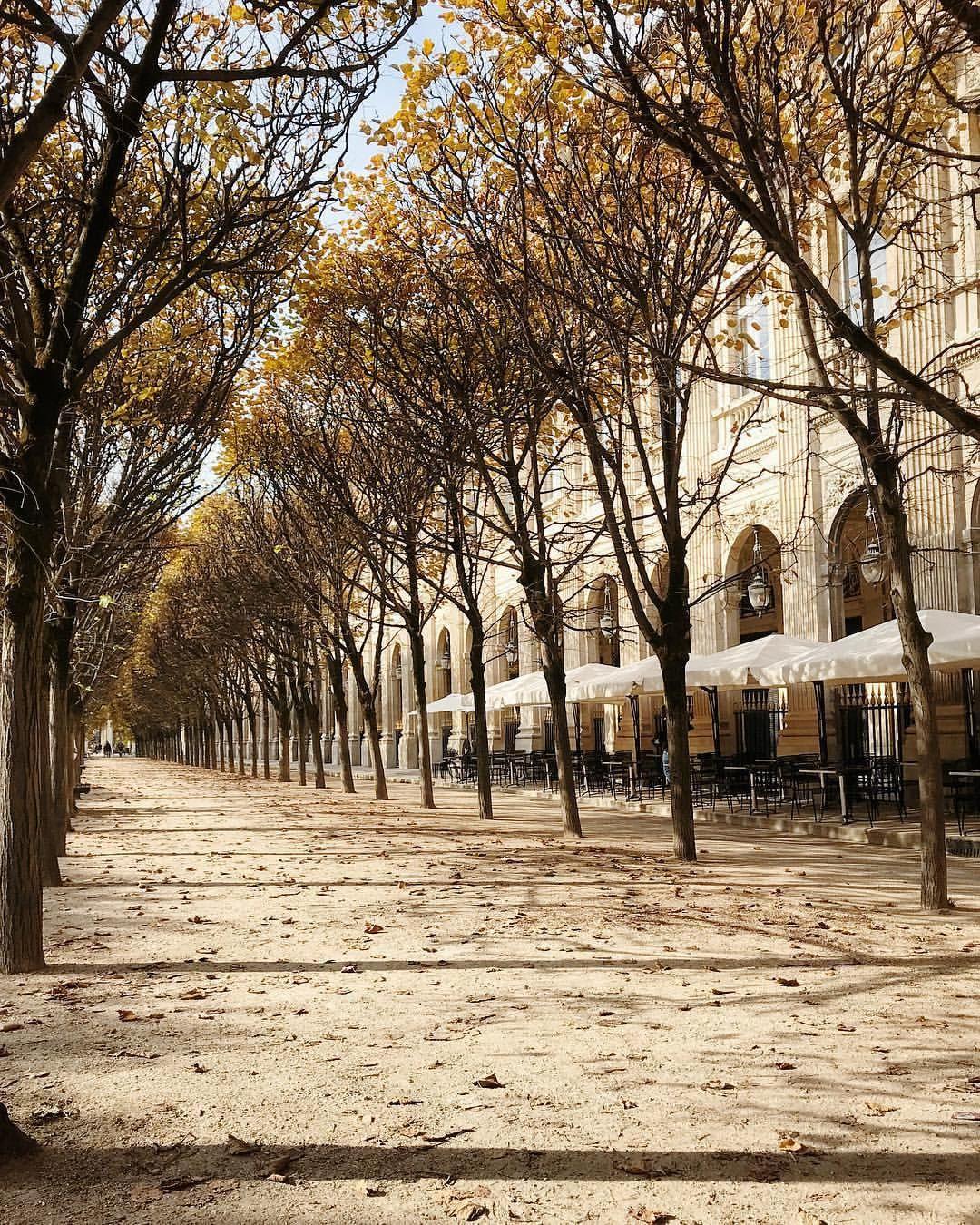 Jardin Du Palais Royal Paris France Paris Is Always A Good Idea
