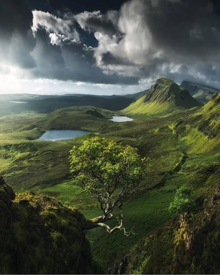 The Lonely Tree At Quiraing Isle Of Skye Isle Of Skye Scottish Highlands Landscape Photography