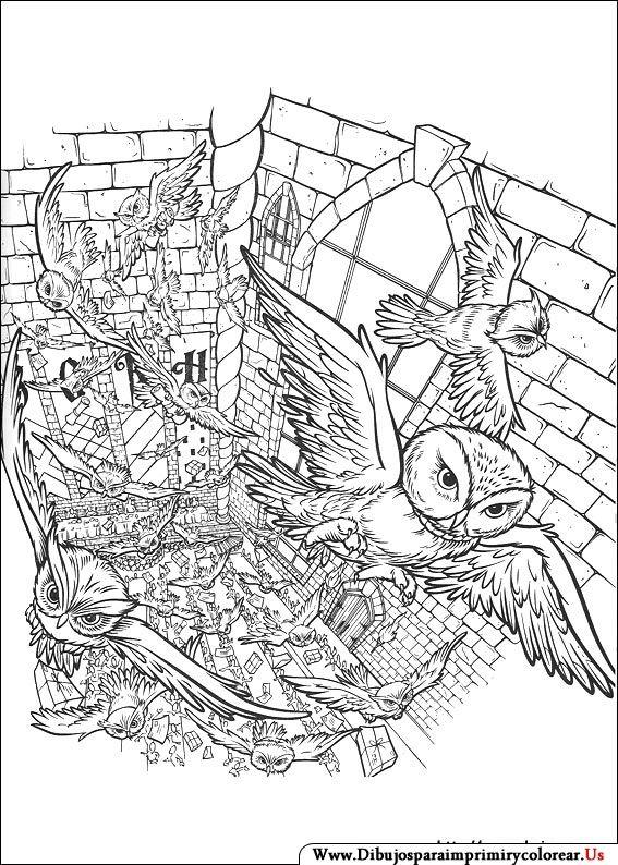 Dibujos de Harry Potter para Imprimir y Colorear   B/N   Pinterest ...