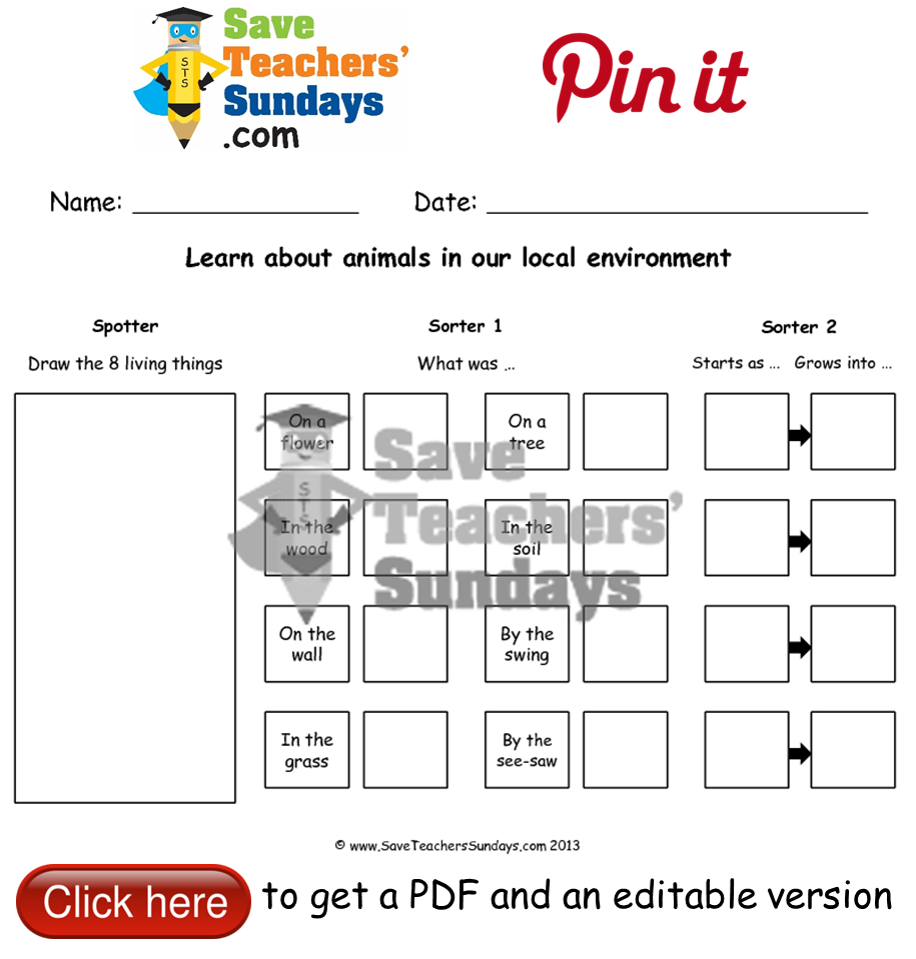 Worksheets Animal Habitats Worksheets online activities on animals in the local environment worksheet year 2 lesson 9 and their habitats worksheets plans other primary teaching resources
