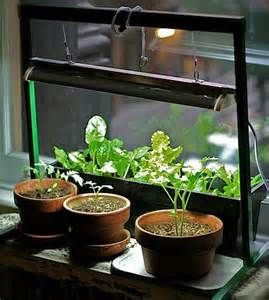 Indoor herb garden with grow light tiny apartment gardening indoor herb garden with grow light workwithnaturefo