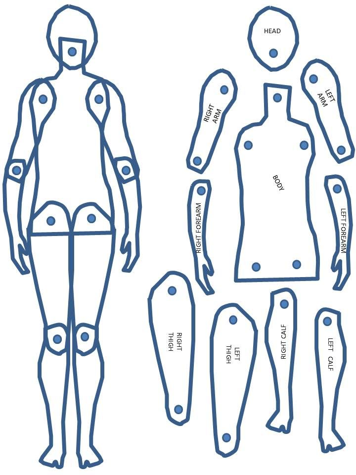 image regarding Printable Paper Doll Body called Physique Percentage Artwork - How in the direction of . Paper puppets