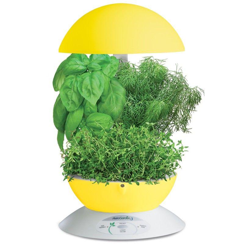 Aerogarden 3 Yellow Herbs Indoors Aerogarden Indoor 400 x 300