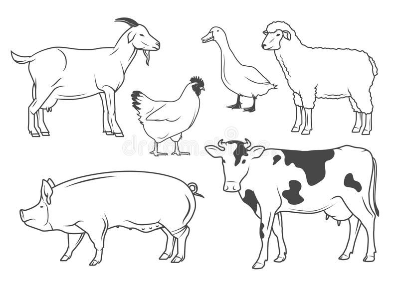 Farm Animals Set Of Vector Drawings Of Farm Animals Ad Set Animals Farm Farm Dra Animals Drawing Images Baby Animal Drawings Animal Line Drawings