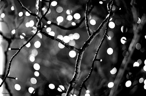 Light Black And White And Black Image Black And White