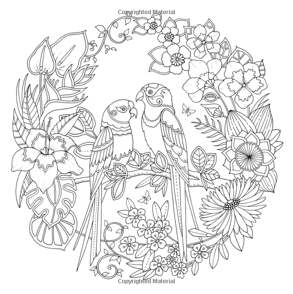 Pin On Adult Coloring Pages Animals