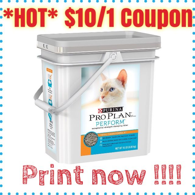 photo68 Pet mart, How to plan, Clumping cat litter