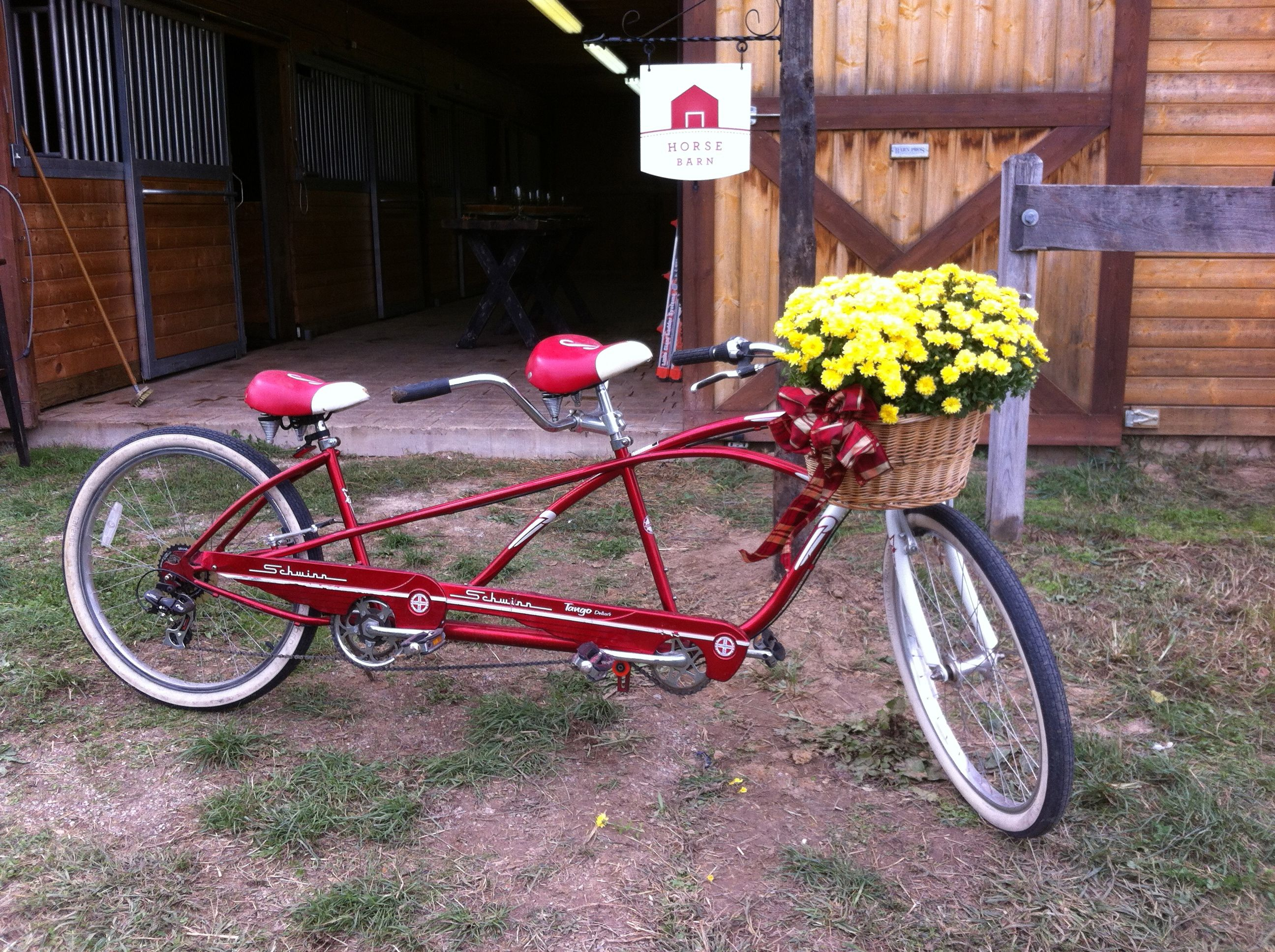Bicycle built for the two of you!
