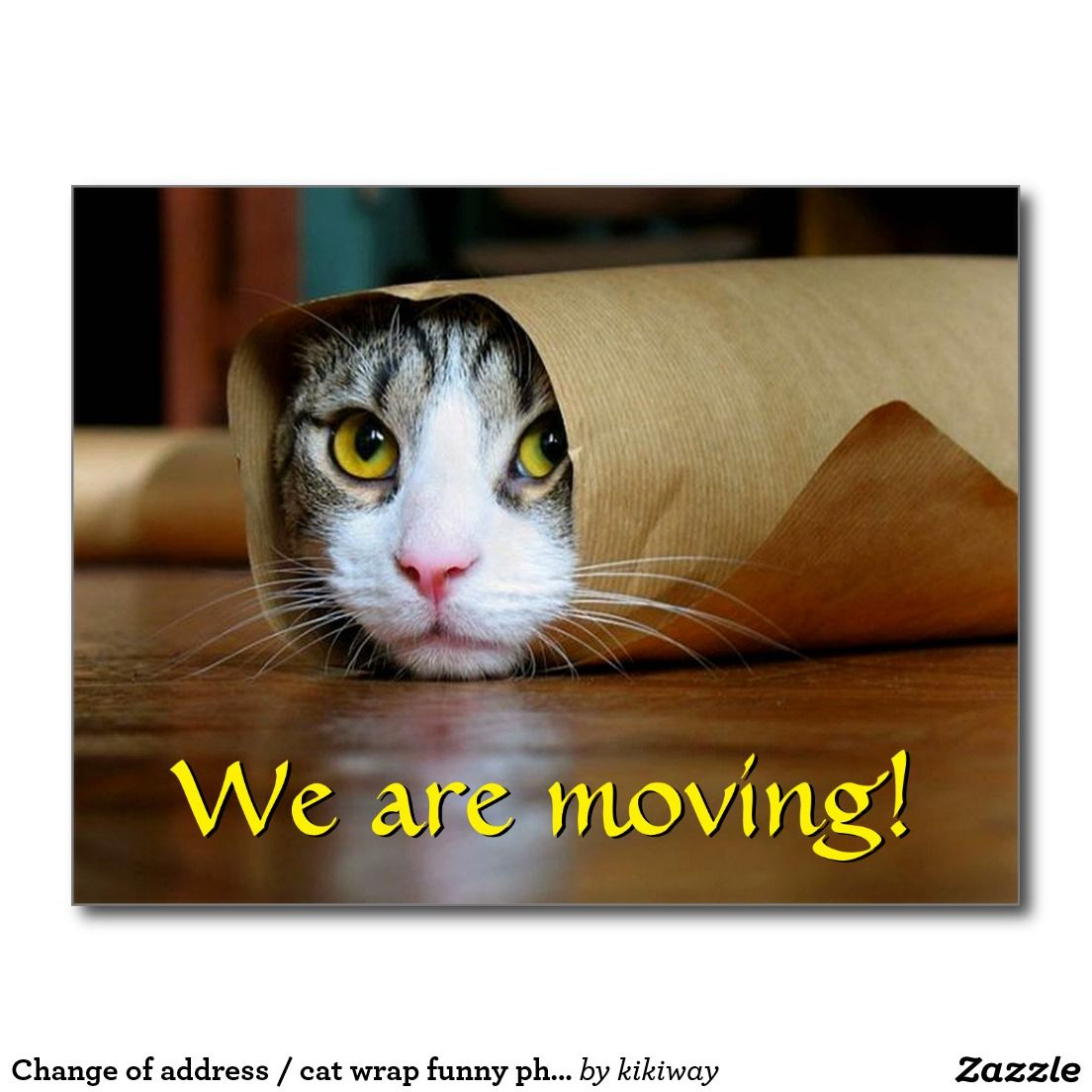 Create Your Own Postcard Zazzle Com In 2020 Funny Cat Wallpaper Funny Cat Videos Funny Cat Compilation