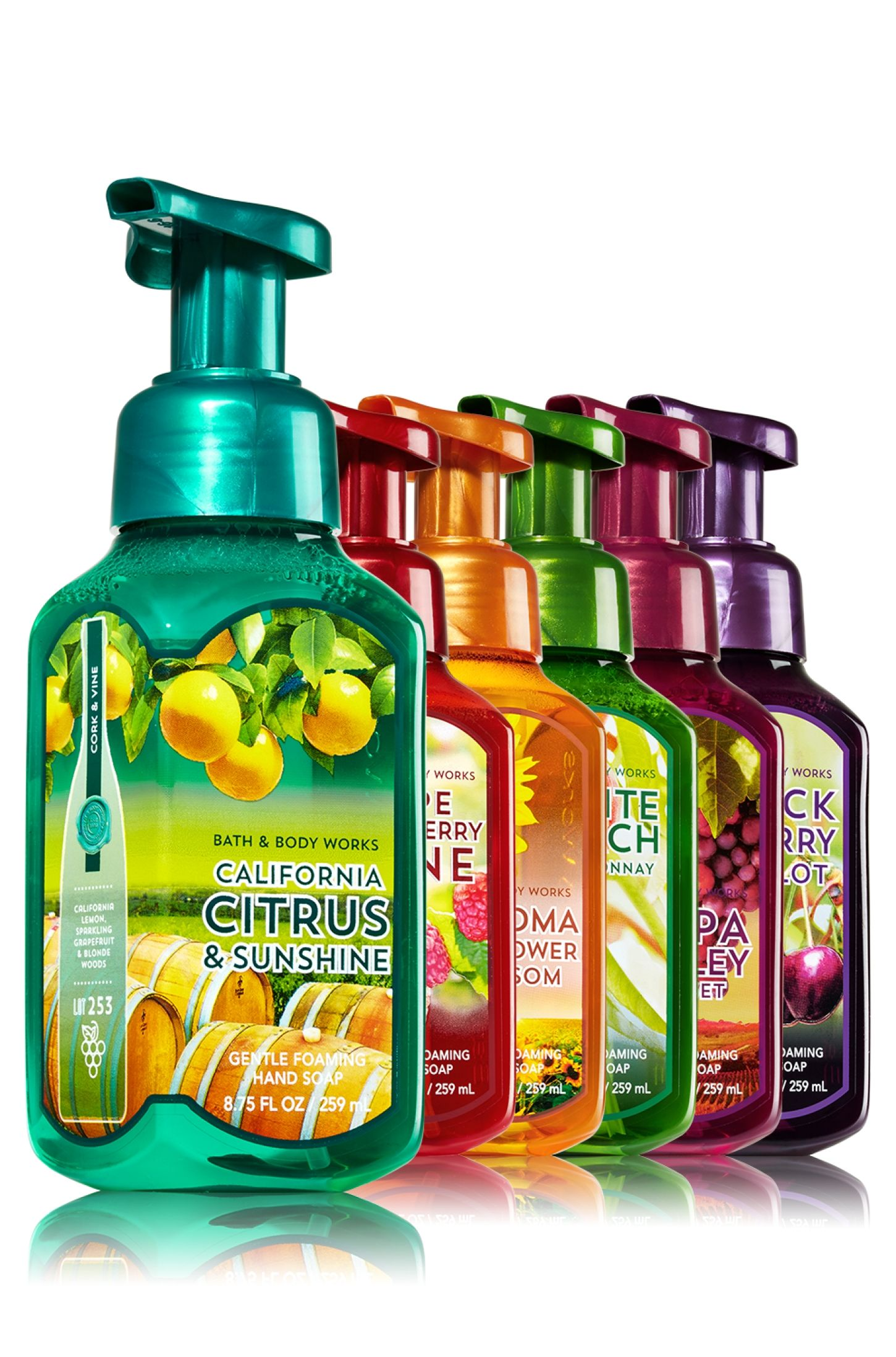 Vineyard Favorites Gentle Foaming Hand Soap Bundle Soap