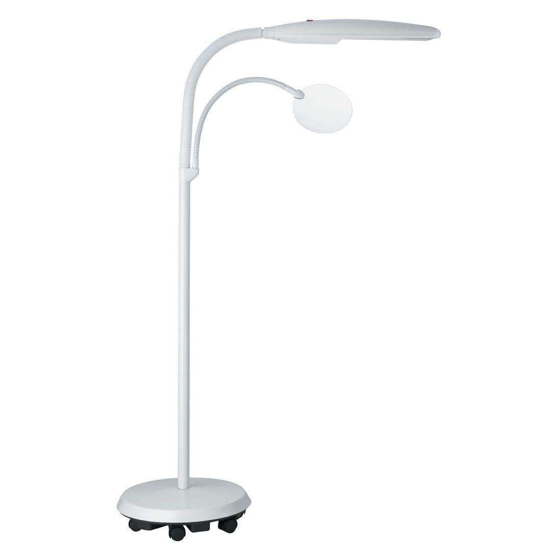 Daylight Swan Floor Lamp Lamp Floor Lamp Desk Lamp Design